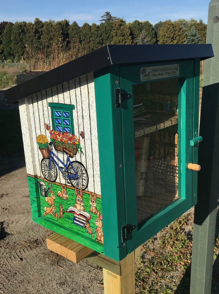 garden-shed-little-library