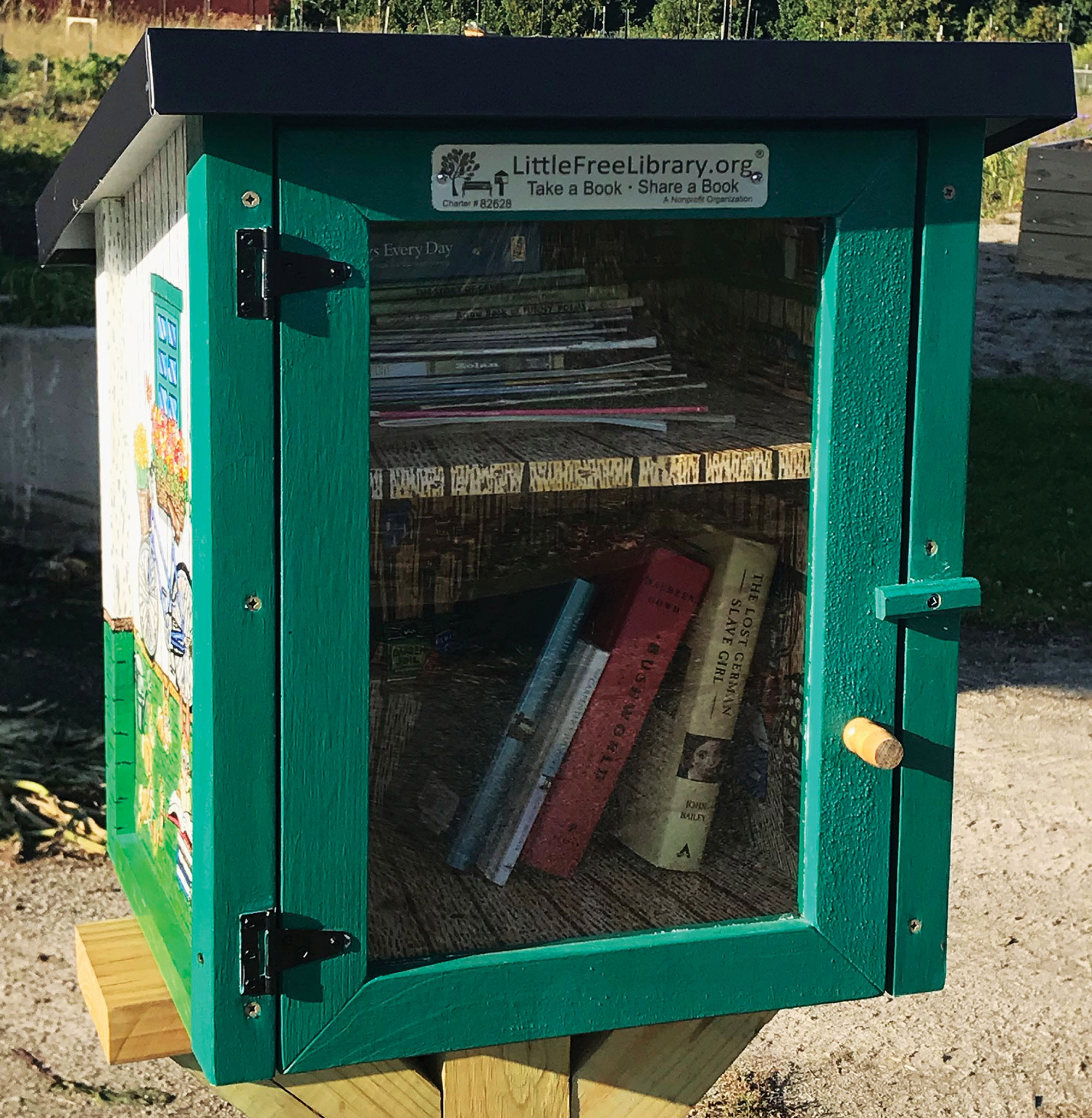 garden shed little library thumb 4